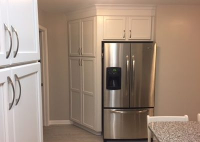 Transitional Kitchen Fridge